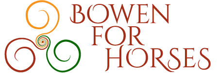 Logo Bowen for horses